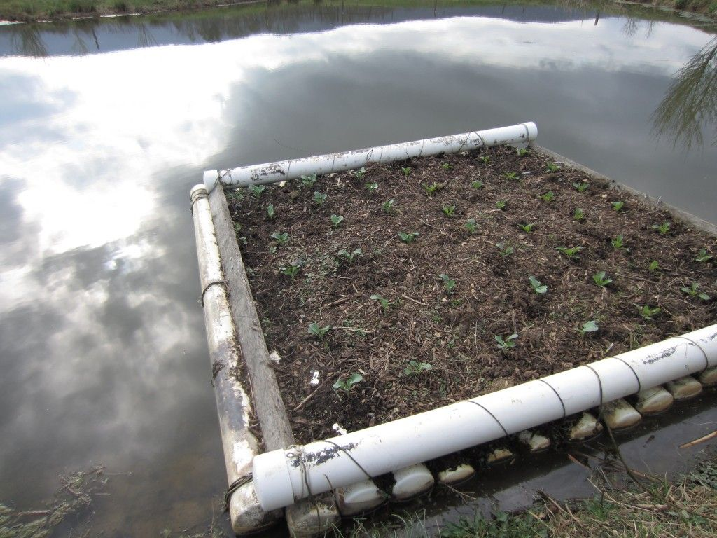 The Floating Garden Has Several Things That Make It Really 400 x 300