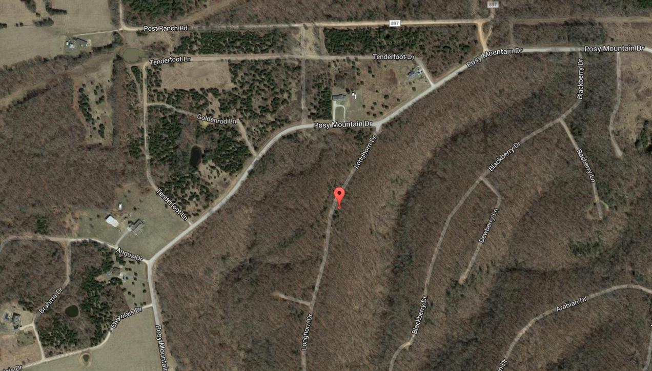 Googe Maps%0A LONGHORN DRTypical Lot  LONGHORN DRRoad To Lot  Longhorn Dr  AR  Plat  mapLonghorn