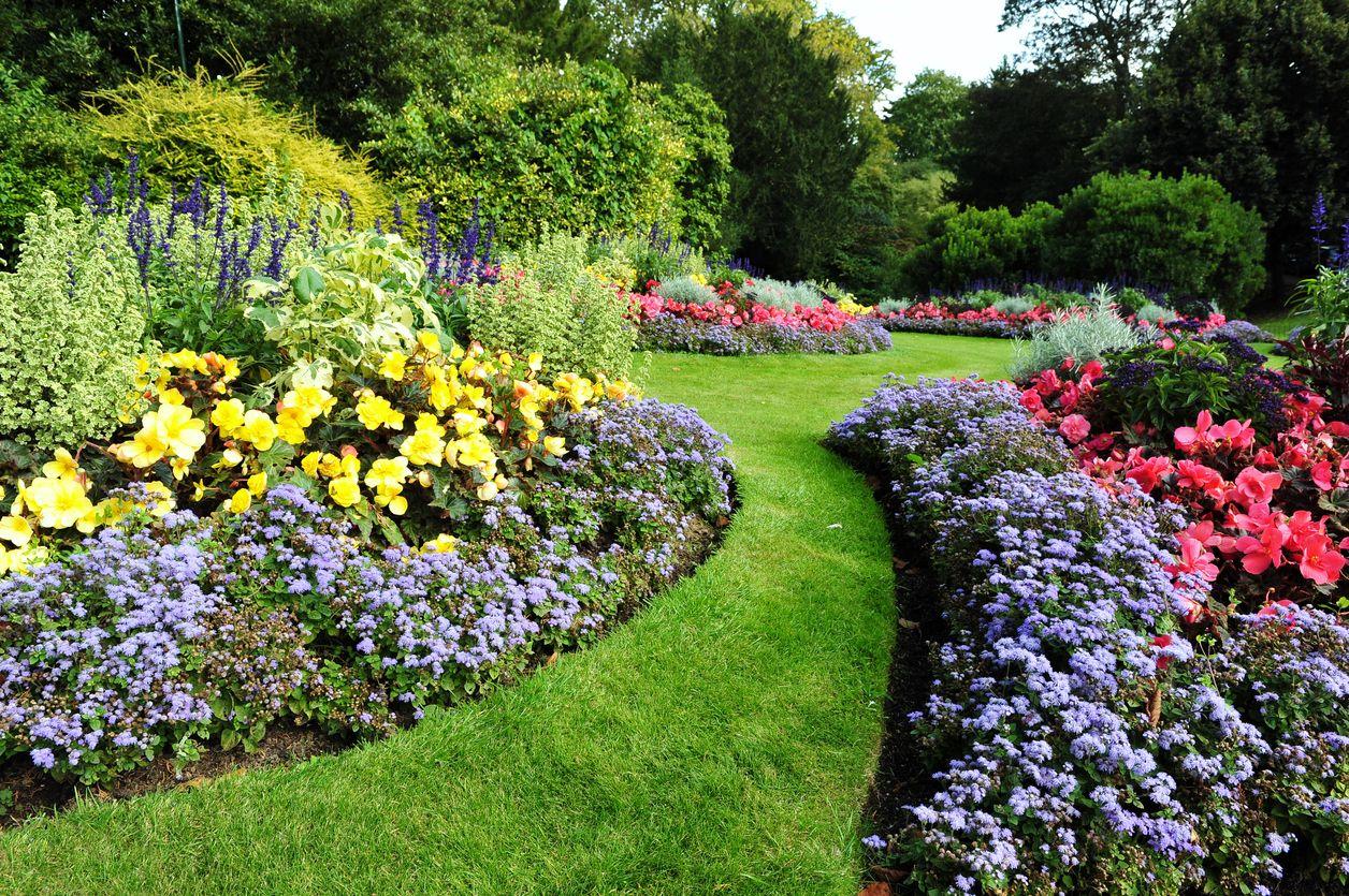 Asymmetrical Garden Design Learn About Asymmetrical Landscaping In 2020 Garden Maintenance Garden Design Diy Landscaping