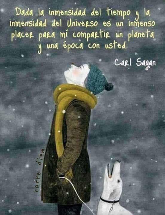 Inmensidad Frases De La Vida Carl Sagan Y Imagenes Para
