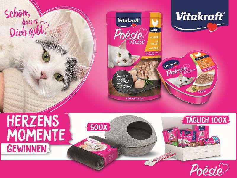 Passend zur kuscheligen Jahreszeit: POESIE®-Gewinnspiel für Katzenfans