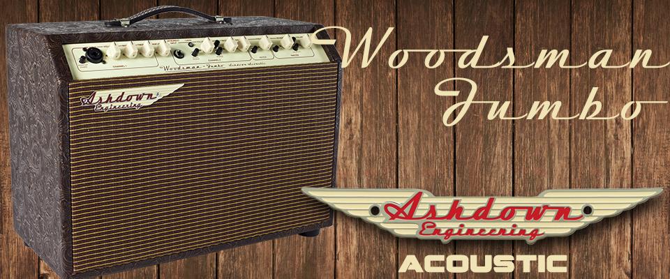 Woodsman Jumbo 65w 2 Channel Acoustic