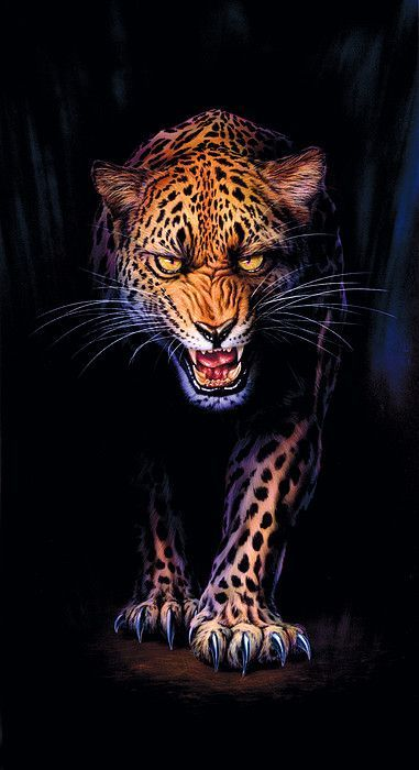 Prowling Leopard Crop 1 by MGL Meiklejohn Graphics Licensing
