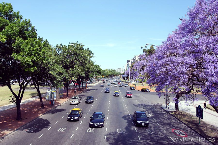 Buenos Aires at summer