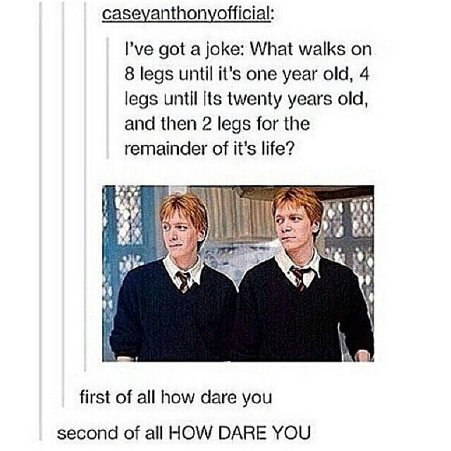 Fred And George Harry Potter Jokes Harry Potter Series Harry Potter Universal