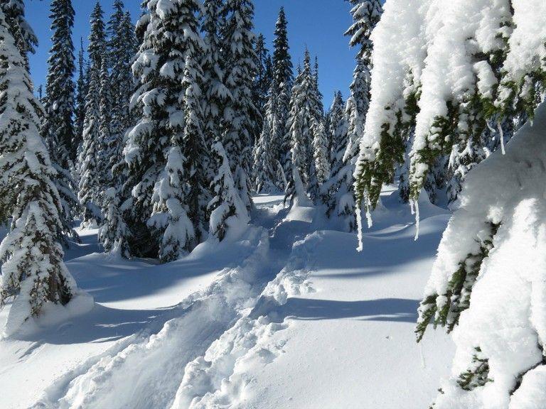 Skyline Lake Snowshoe track Winter destinations, Winter