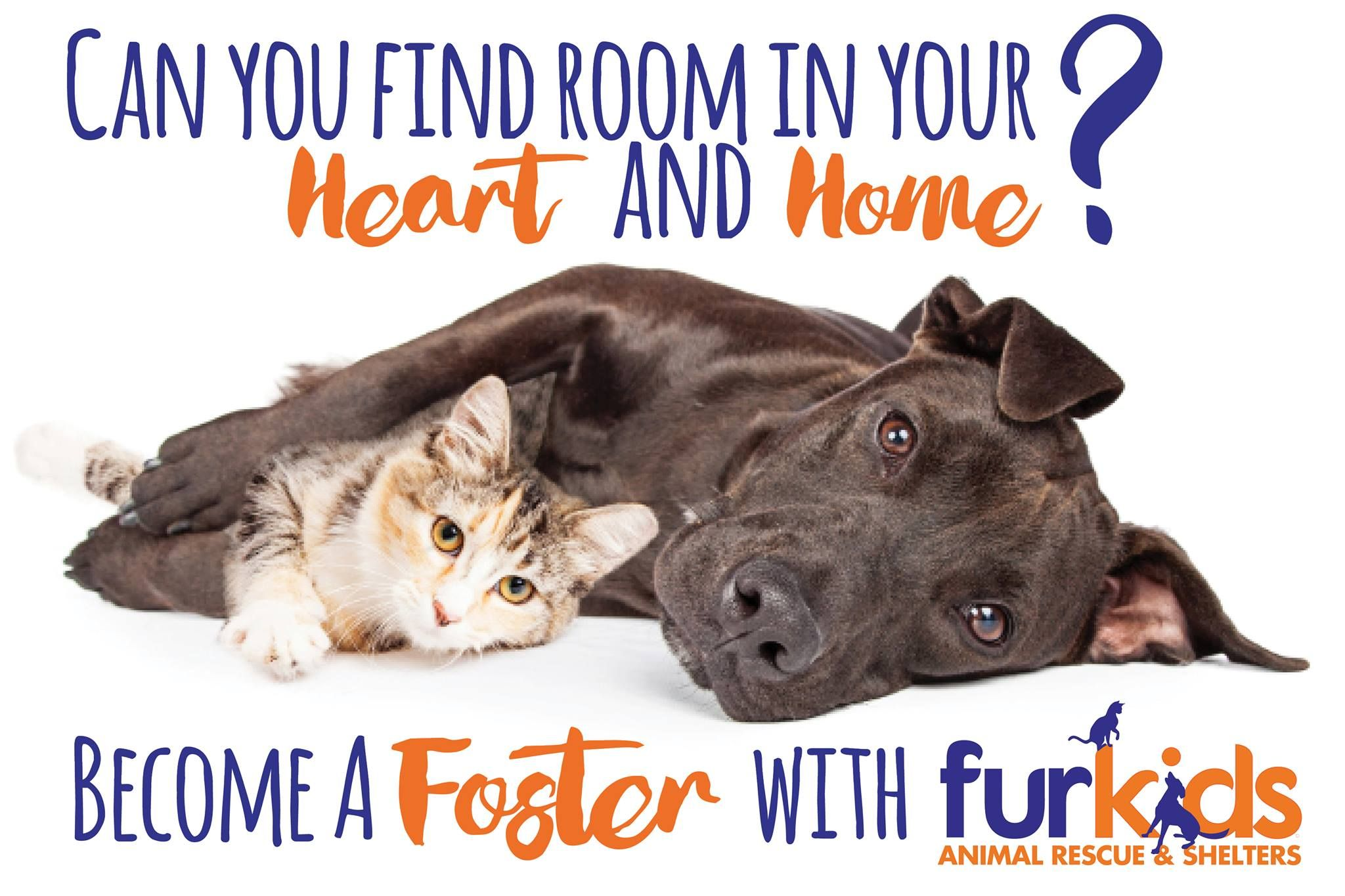 Pin By Suzanne On Save Rescue Assist All Animals Animal Rescue Shelters Pet Adoption Animal Rescue