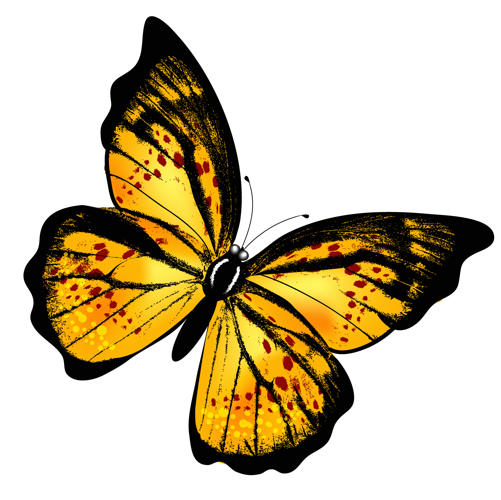 yellow transparent butterfly png clipart picture small