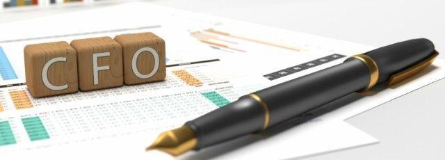 Get An Elite Cfo Email List  Chief Financial Officer List