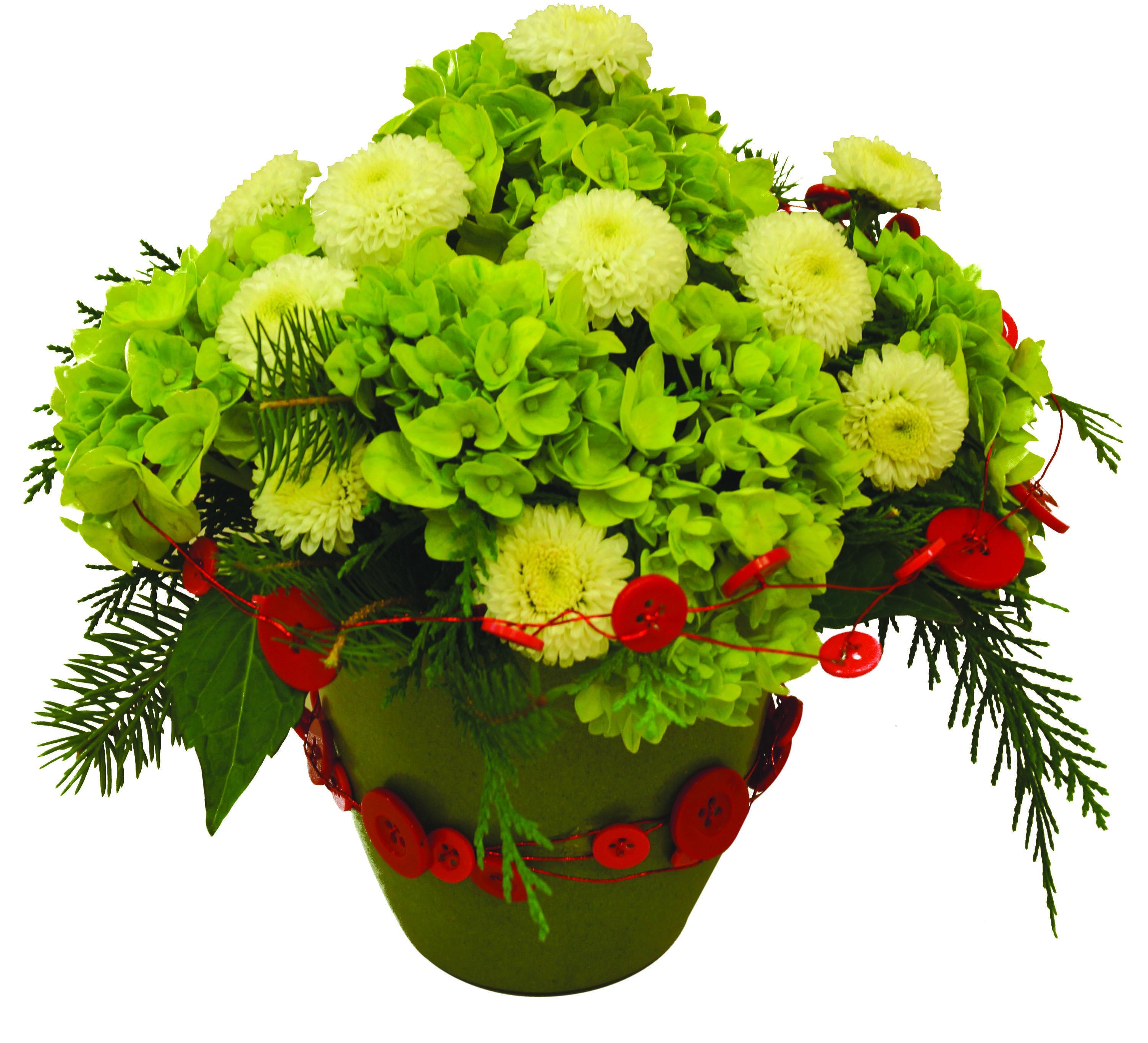 Design a Season\'s Greetings floral arrangement using OASIS Button ...