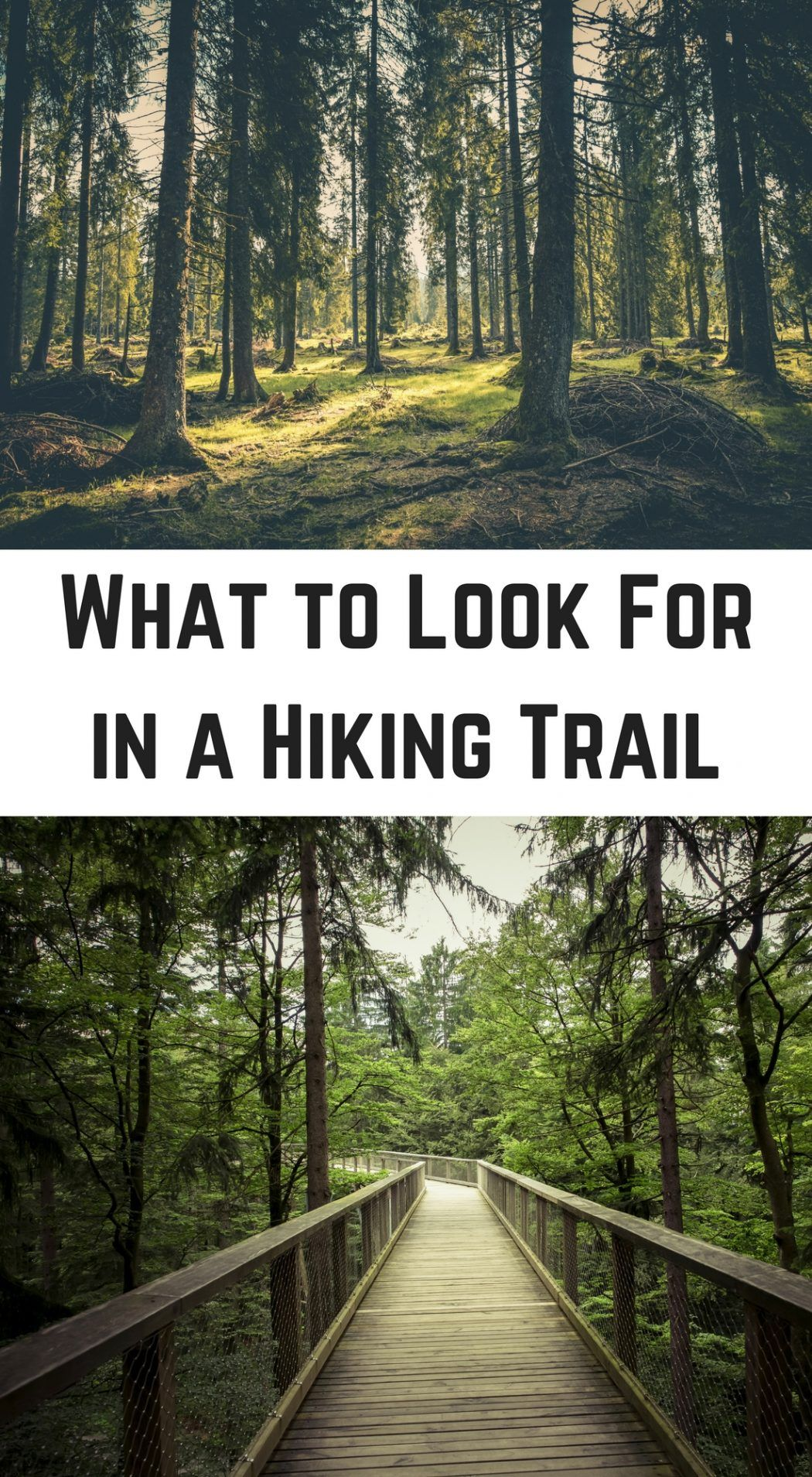 What to Look For in a Hiking Trail | Camping | Hiking guide