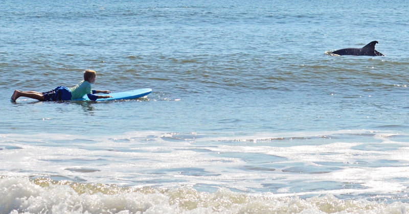 15 Places You Can Learn To Surf In Jacksonville Jacksonville Beach Moms Surfing Learn To Surf Jacksonville Beach