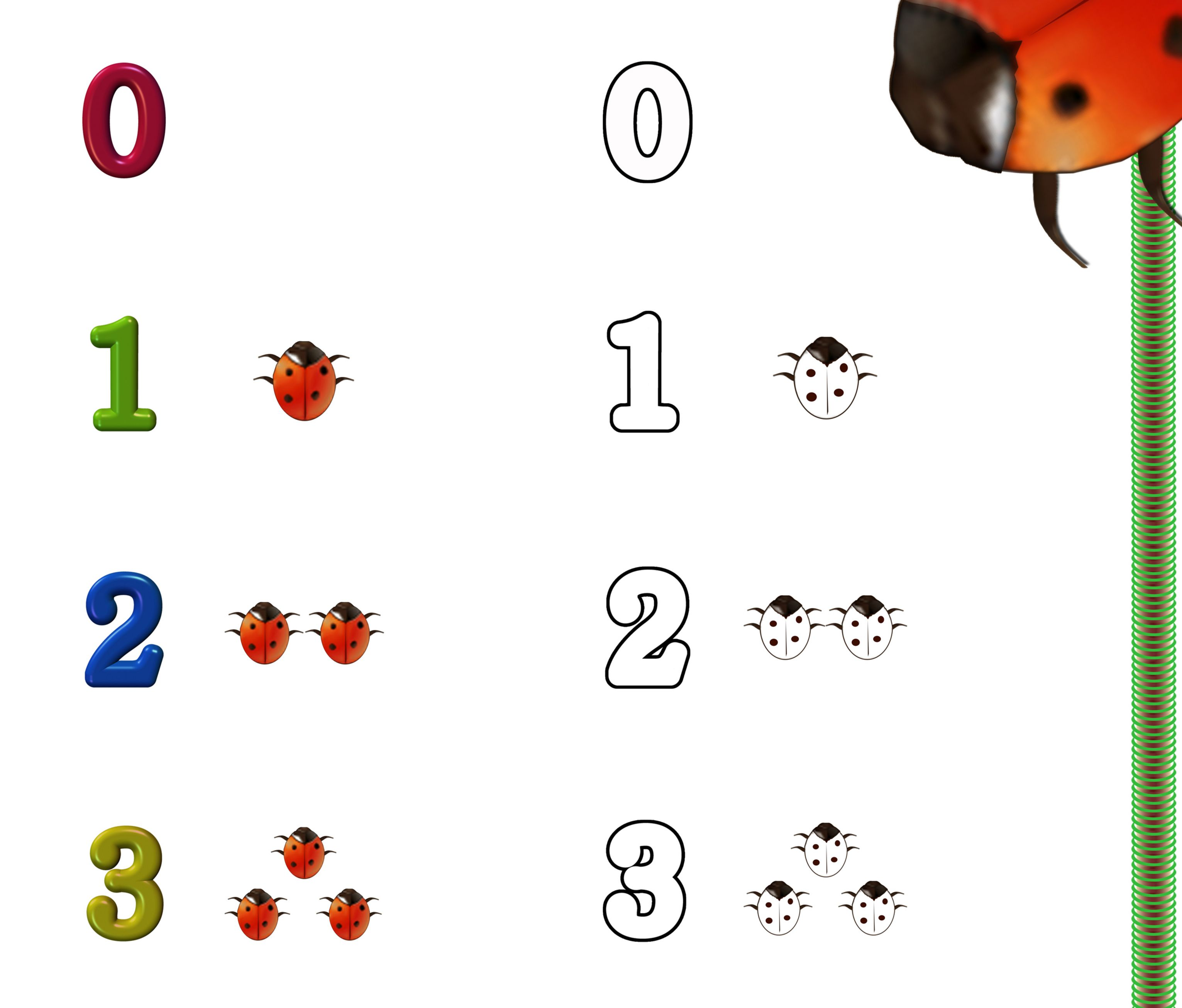 Cute Lady Bug Counting Game