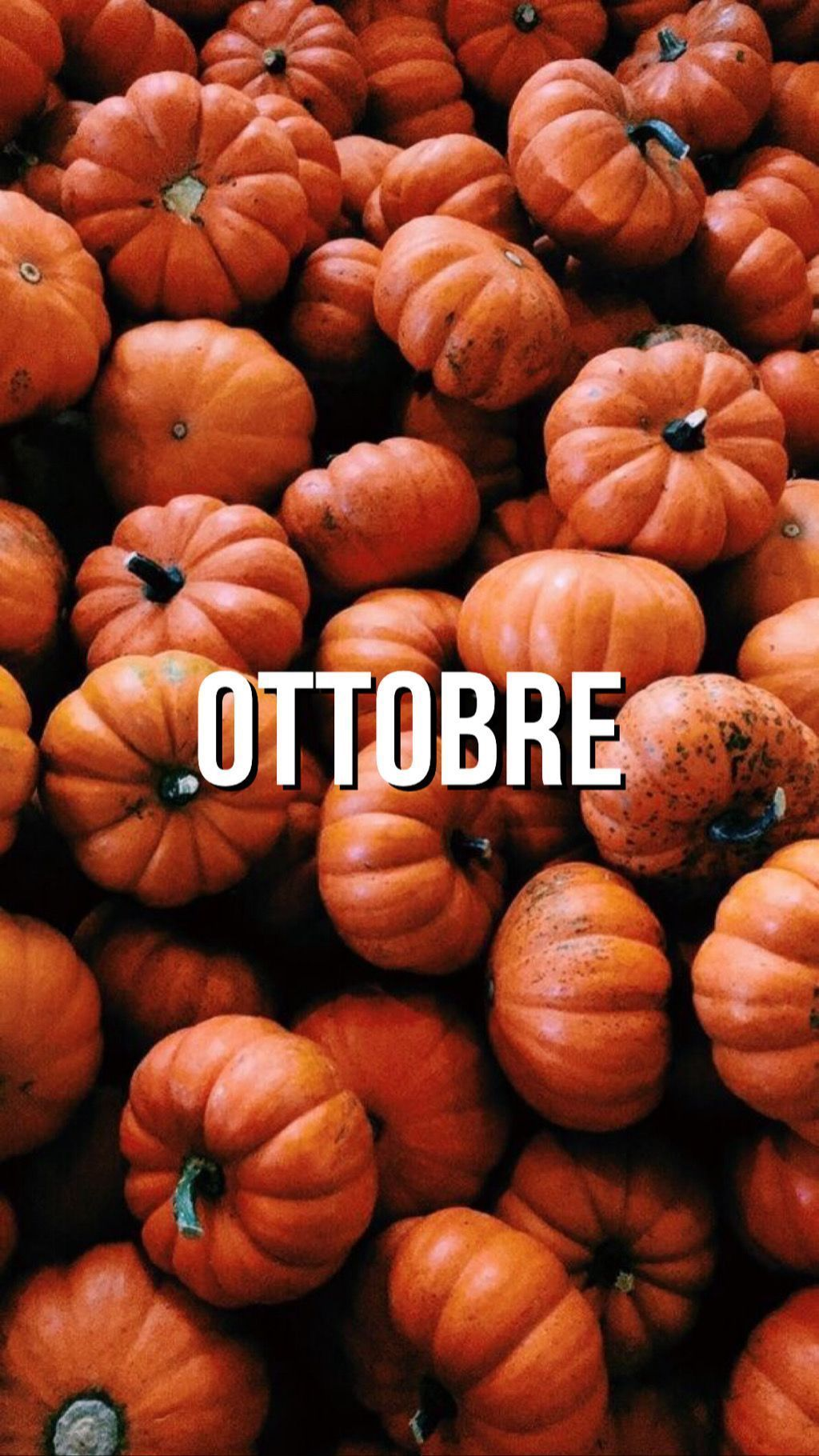 october wallpaper ???? #octoberwallpaper #october #ottobre #hellooctober #helloautumn #hellofall #october2019 #leaves #octobermood #autumnmood #autumnvibes #welcomeoctober #welcomeautumn #welcomefall #octoberwallpaper #wallpapers #autumnwallpaper #fallwallpaper #background #lockscreen #octoberbackground #octoberlockscreen #sfondi #sfondiiphone #iphone #octoberwallpaperiphone october wallpaper ???? #octoberwallpaper #october #ottobre #hellooctober #helloautumn #hellofall #october2019 #leaves #oct #octoberwallpaper