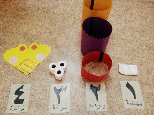 اللعبه الجماعية المنظمة عبارة عن ارقام مرتبطه بمراحل حياة الفراشة ولكل مرحلة اداة مخصصه كالتالي بيضة وشاح ابيض يلبسه الطفل ثم يجلس عل Novelty Classroom