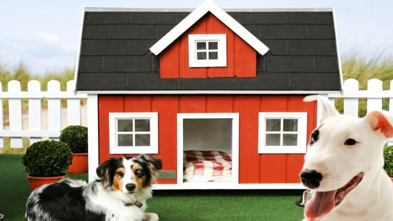 15 Most Expensive Dog House In The World