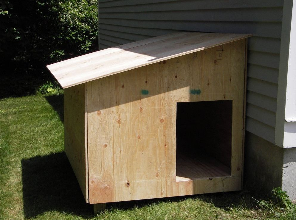 Build Your Own Dog Kennel Interesting Ideas For Home Small Dog