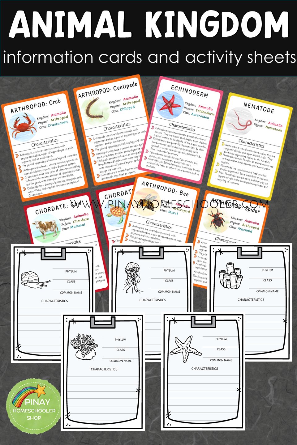 Animal Kingdom Information Cards And Activity Sheets Montessori Lessons Animal Kingdom Activity Sheets [ 1440 x 960 Pixel ]