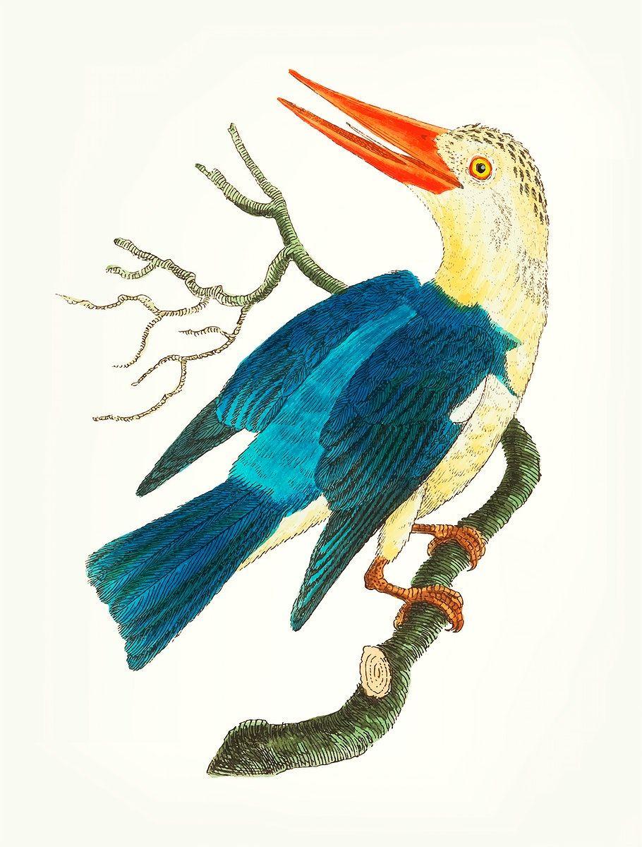 Download premium vector of Vintage illustration of blue