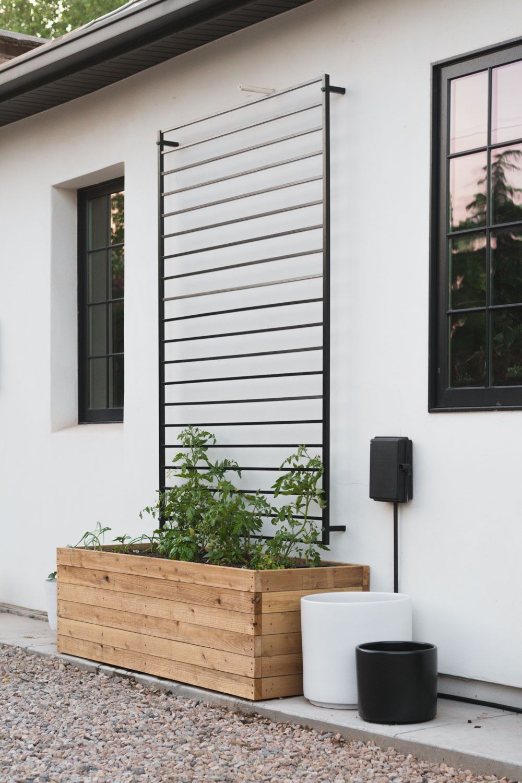 Diy fence panel trellis in 2020 fence wall design