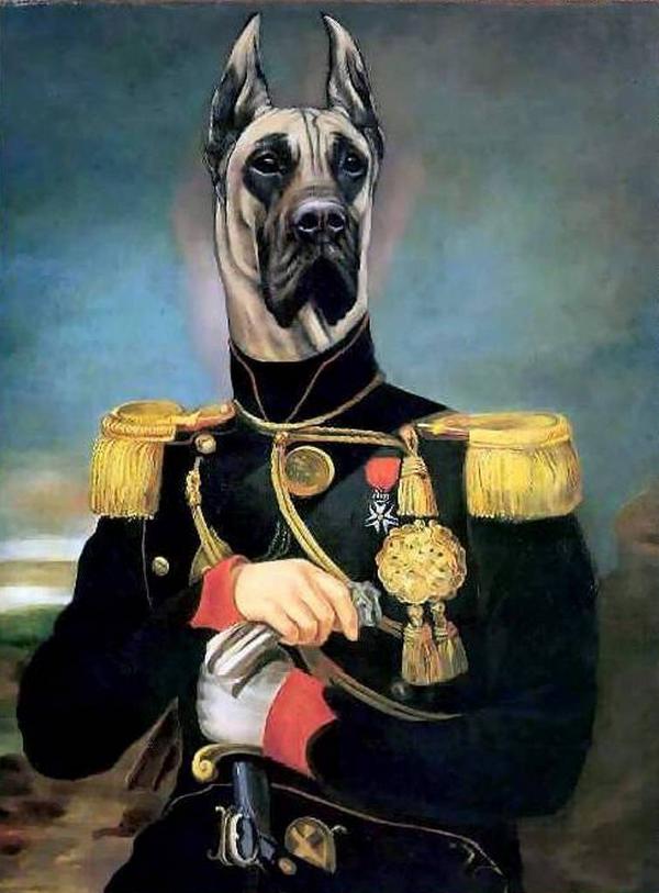 Hebergeur d'image   Art à thème chien, Chien rétro et Portraits de chiens