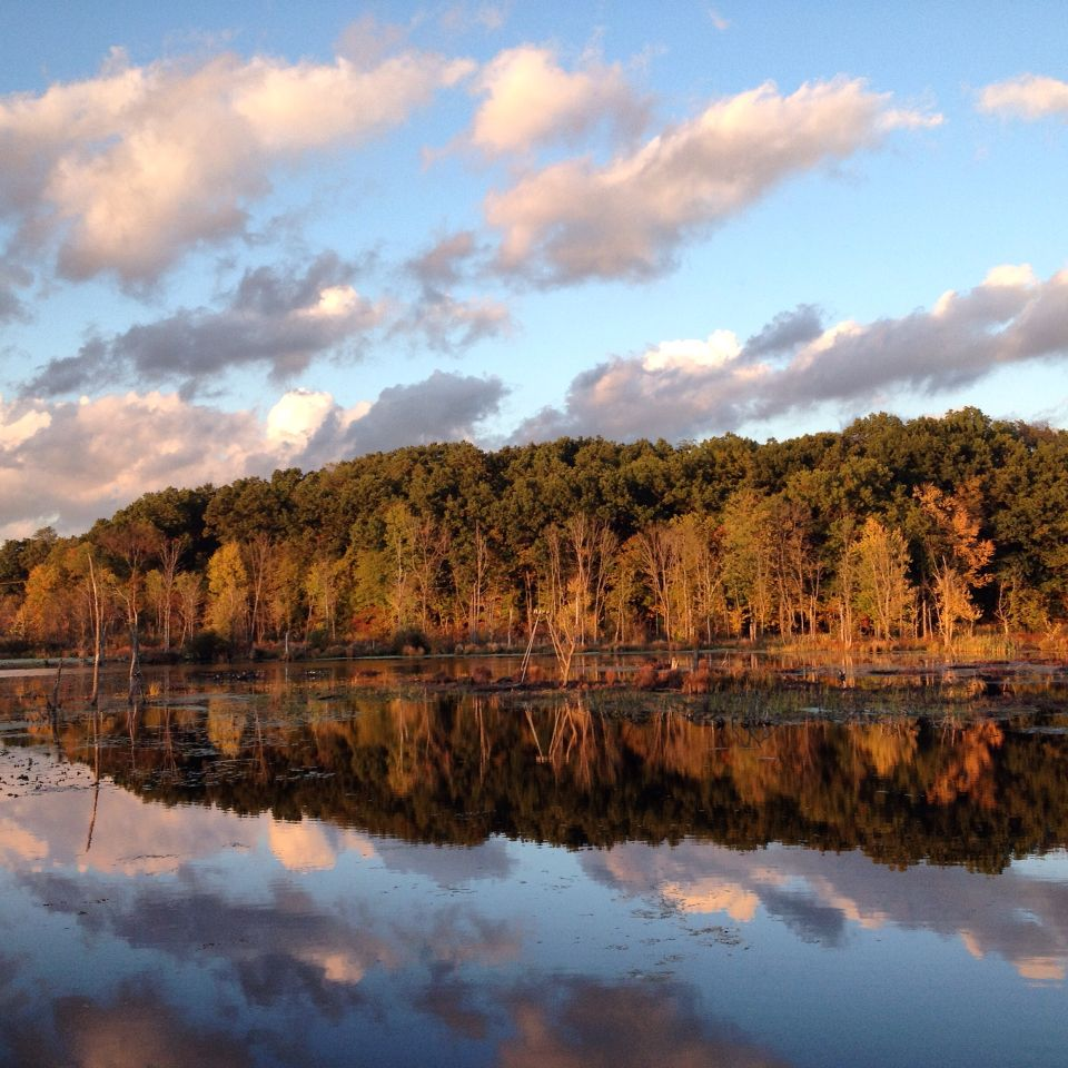 Have Paddled: Thornapple River Hastings, Michigan | My