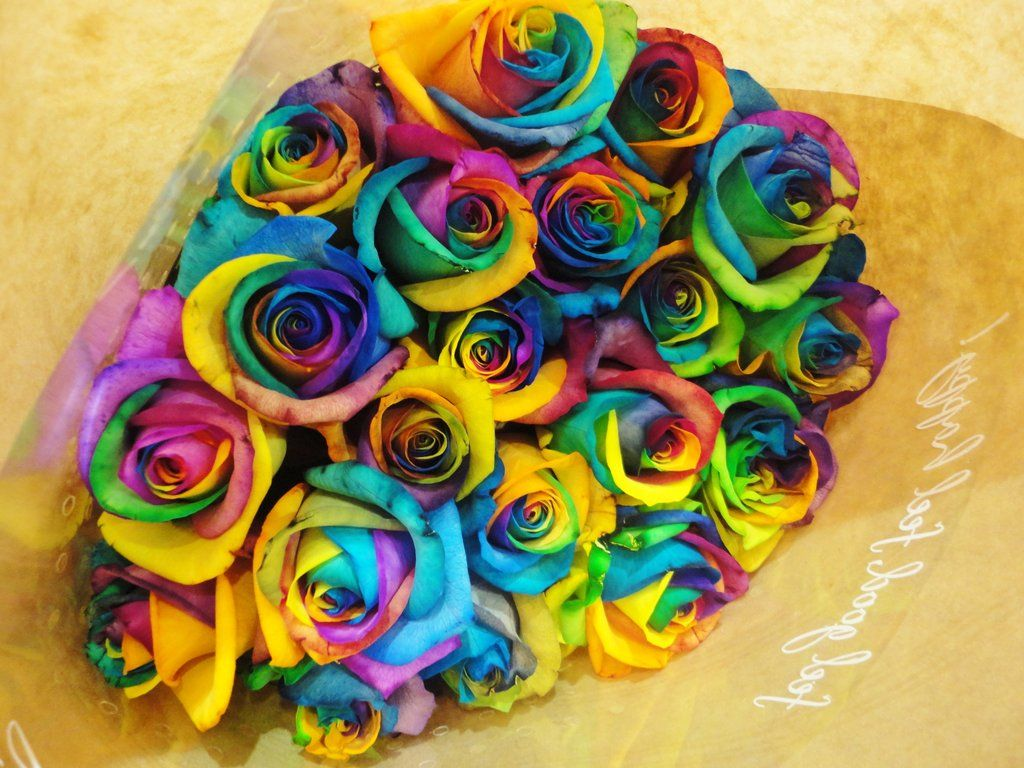 Rainbow Roses Bouquet Rainbow Roses Colorful Roses Dye Flowers