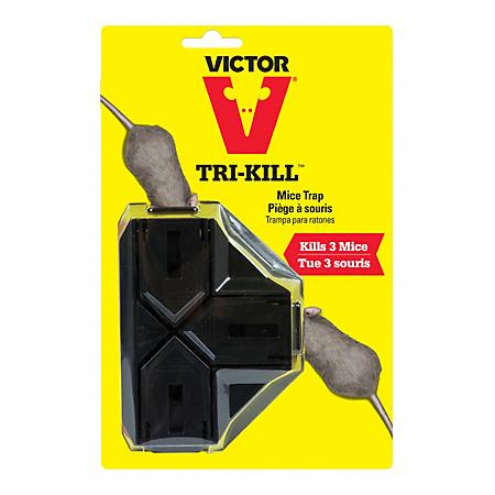 Victor Tri Kill Mouse Trap 4 Traps Model Bm944 4 Victorpest Com Pestcontrol Pestcontrolservices Rodentcont Mouse Traps Rodent Problem Flea Prevention