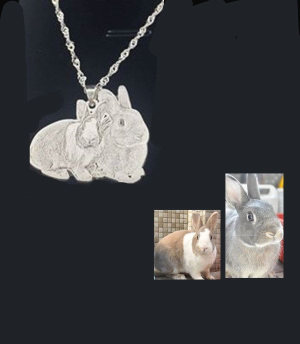 Custom portraits personalized pendant amimal portrait dog lovers custom portraits personalized pendant amimal portrait dog lovers animal pendants mothers day gift engraved photo necklace aloadofball Image collections