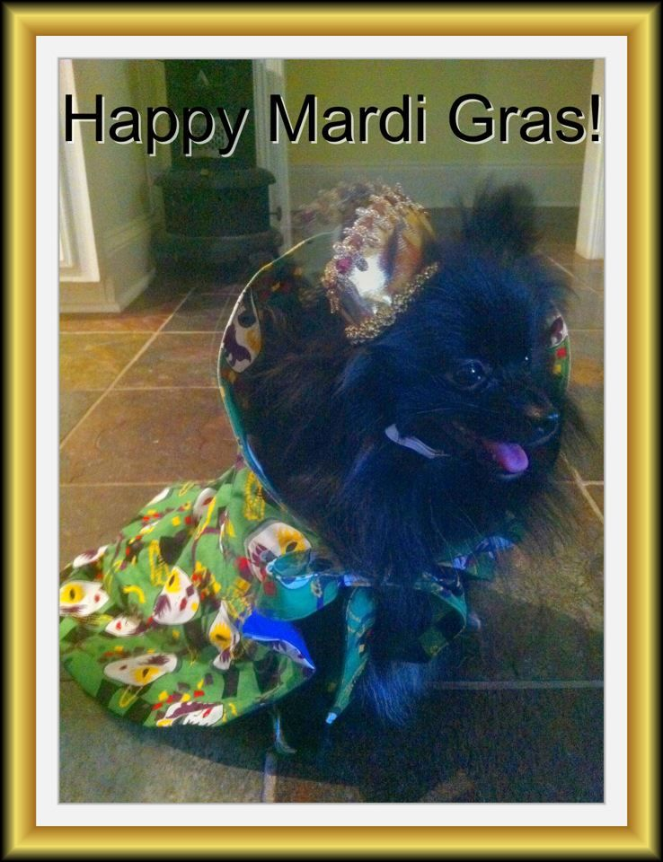 Queen for the Day Animals, Pets, Mardi gras