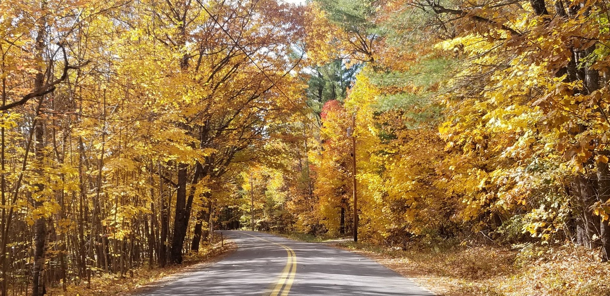 Pin by Kathy LaVigne on Autumn Country roads, Road, Country