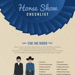 4-H educational Poster Ideas | Horse Show Checklist | 4h ideas ...