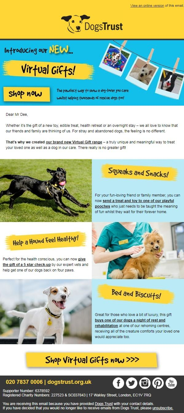 Dogs Trust Send A Thoughtful Gift That Counts Dogs Trust Thoughtful Gifts Gifts