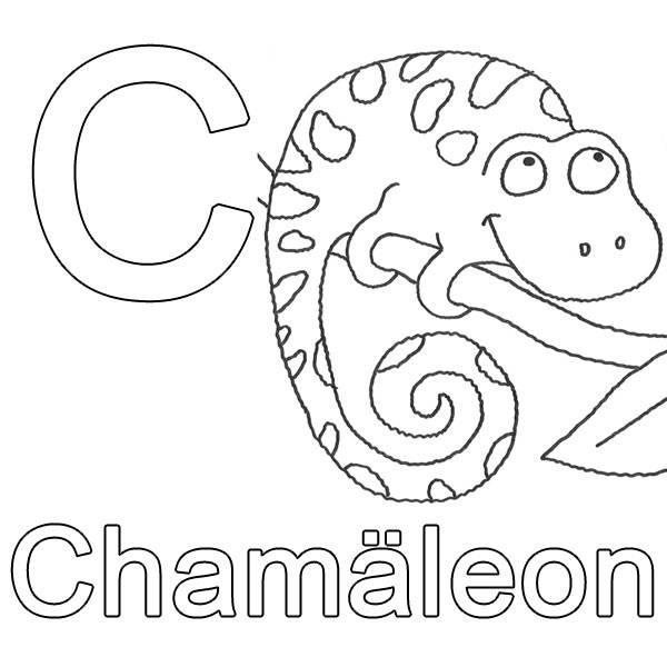 ausmalbild buchstaben lernen c wie chamäleon kostenlos