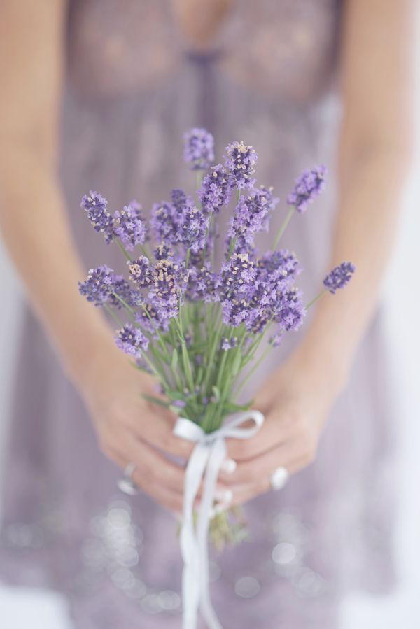 Lovely Lavender Makes A Perfect Tiny Bouquet Lavender Flowers Purple Flowers Flowers