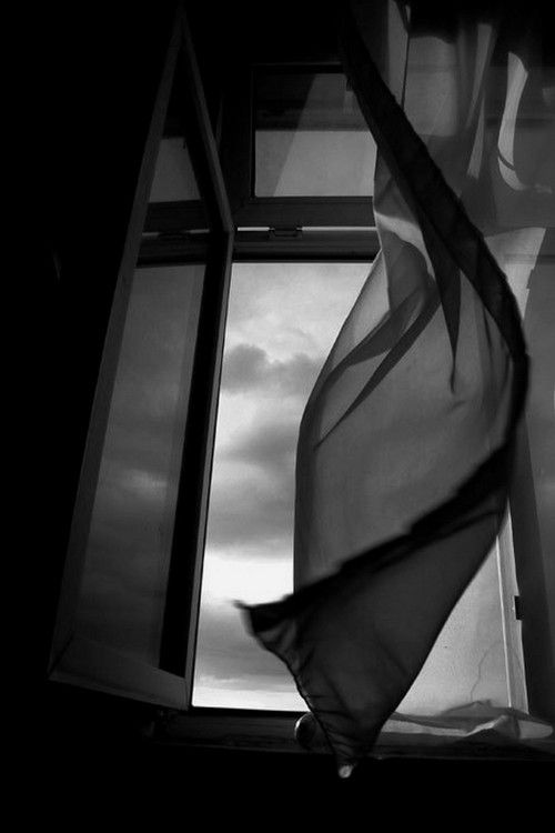 Curtain Blowing In The Wind N I G H T Windows