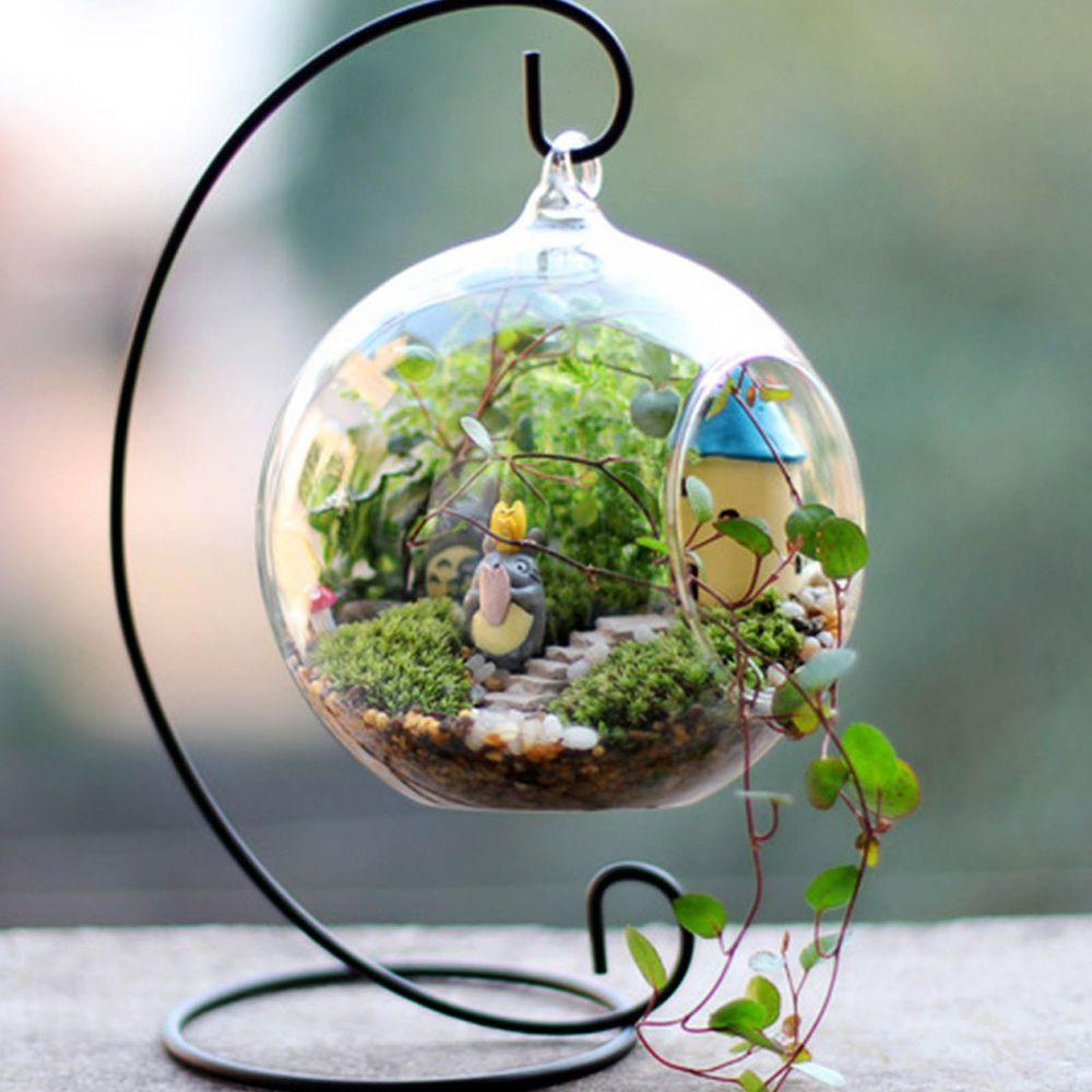 Hanging Glass Ball Vase Flower Planter Pot Terrarium Container Home ...