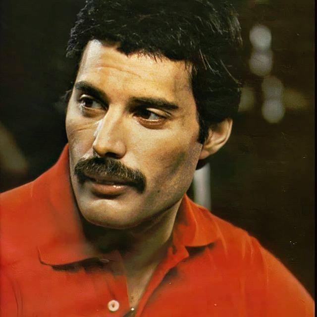 Explore The Freddiemercurylegend Hashtag Statistics And Most Popular Instagram Posts On Pikdo Freddie Mercury What Is Like Mr Fahrenheit