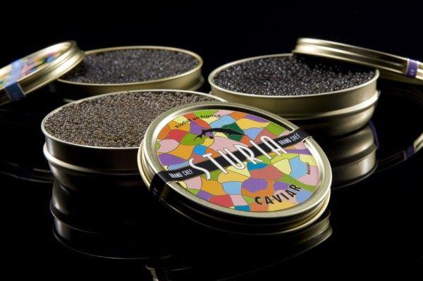 Caviar Sturia – Le caviar expliqué de A à Z – Caviar Français d'Aquitaine