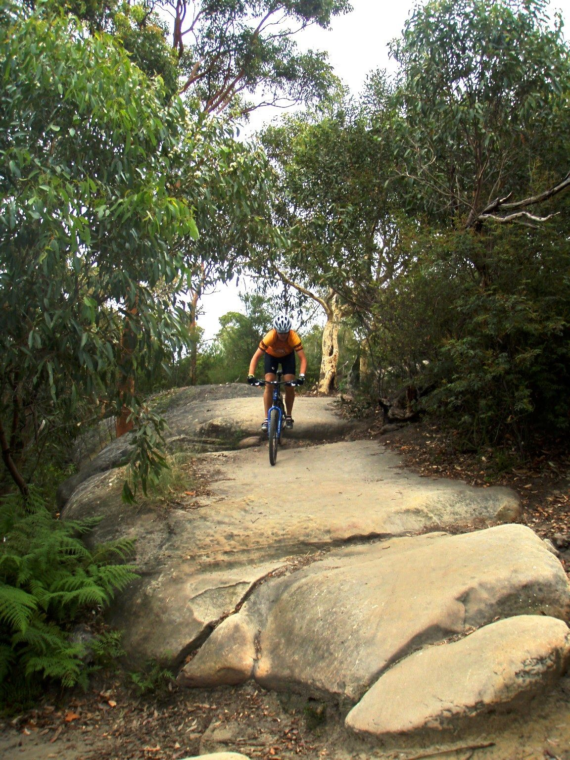 Manley Dam Sydney Mountain Bike Trials Http Www Bewicked Eu 4