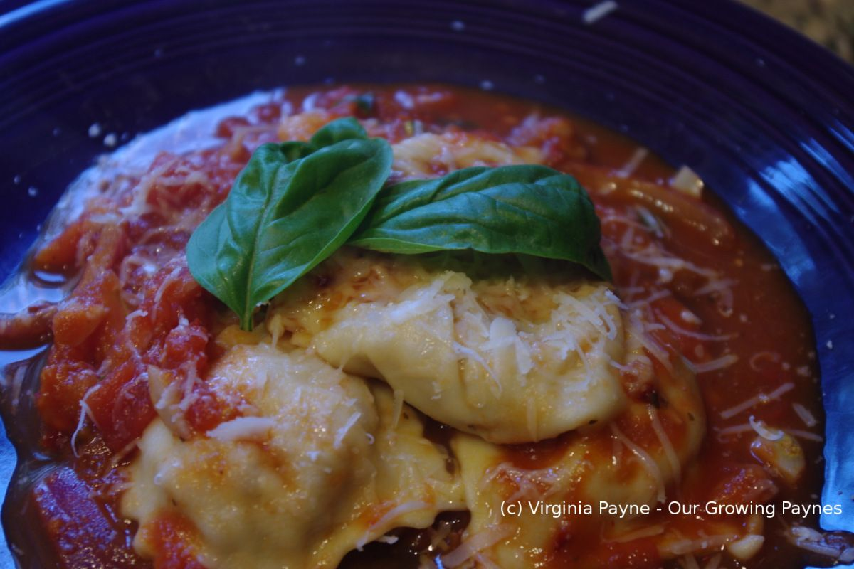 Homemade Sausage Ravioli with Arrabiata Sauce from Our Growing Paynes