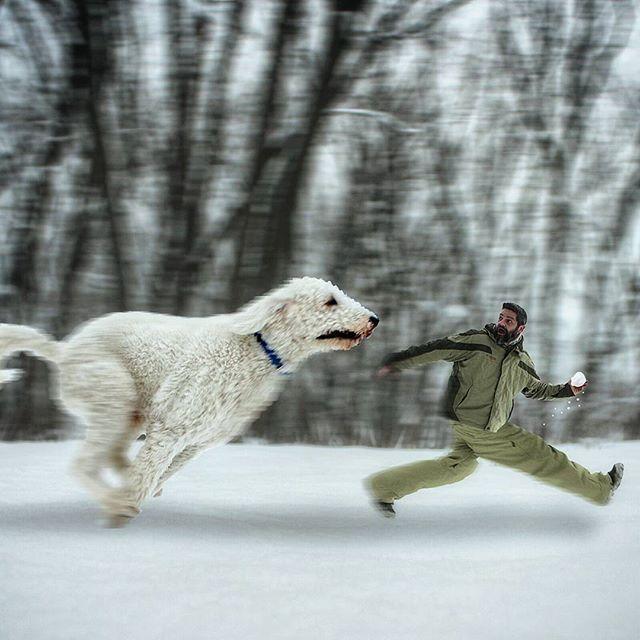 Christopher Cline et Juji, opur des photos super drôles entre un chien et son maître