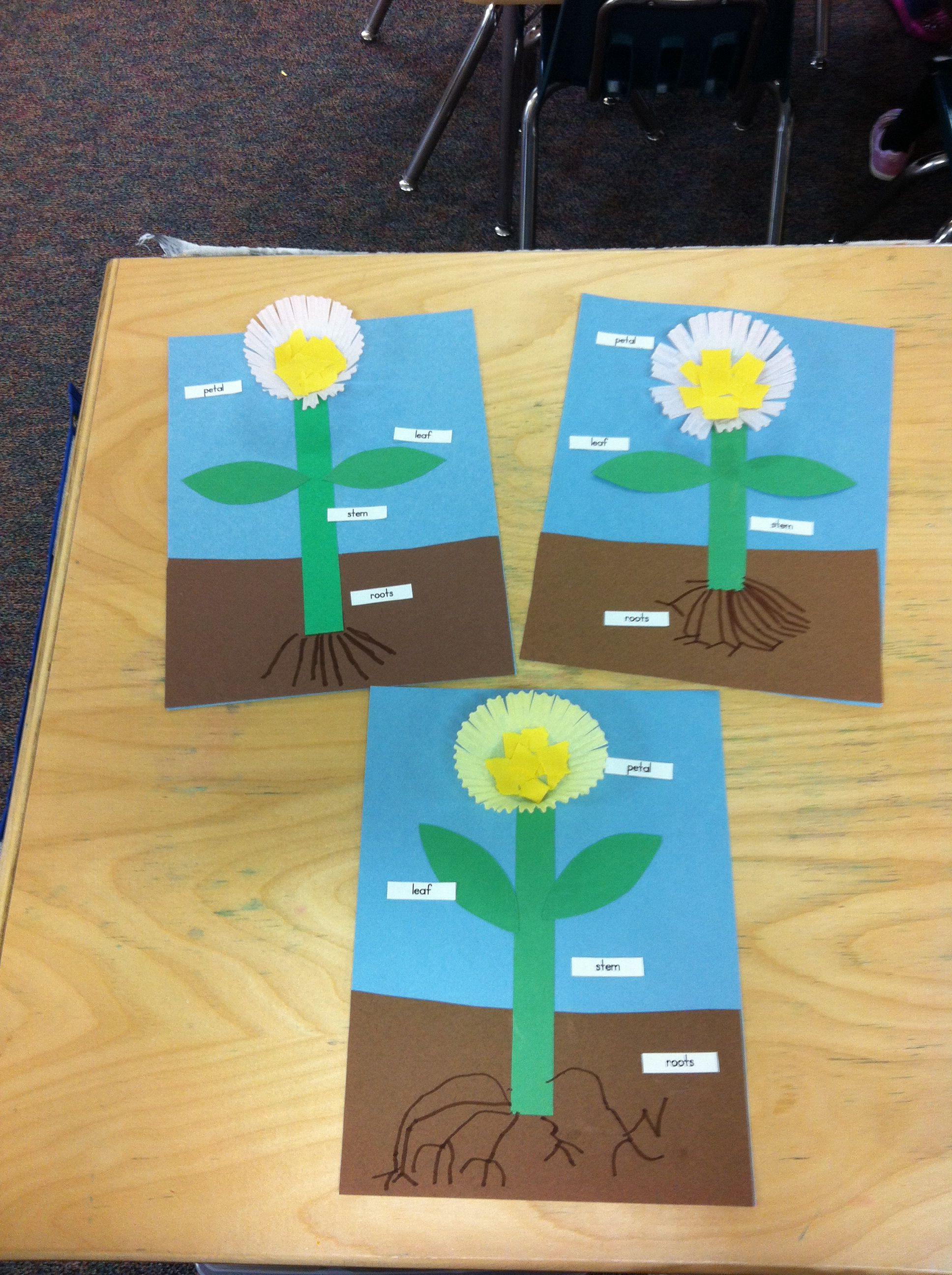 Flower Activity To Label Parts Of A Plant Flower Is