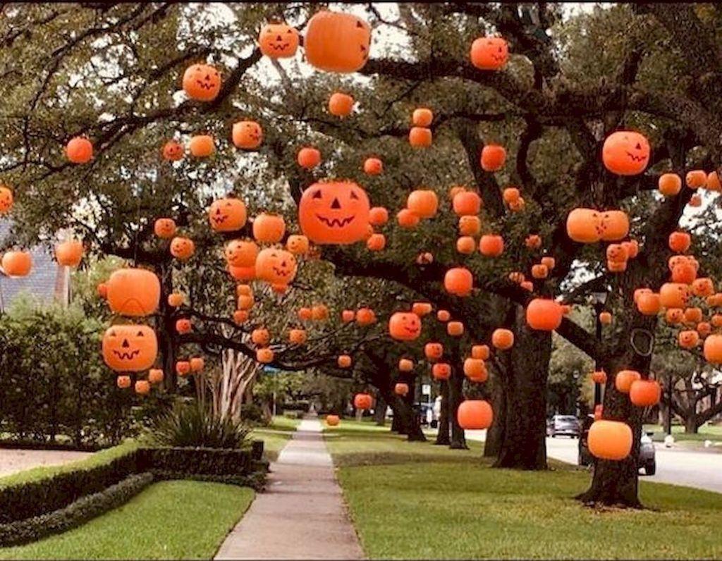 Halloween yard decorations outside