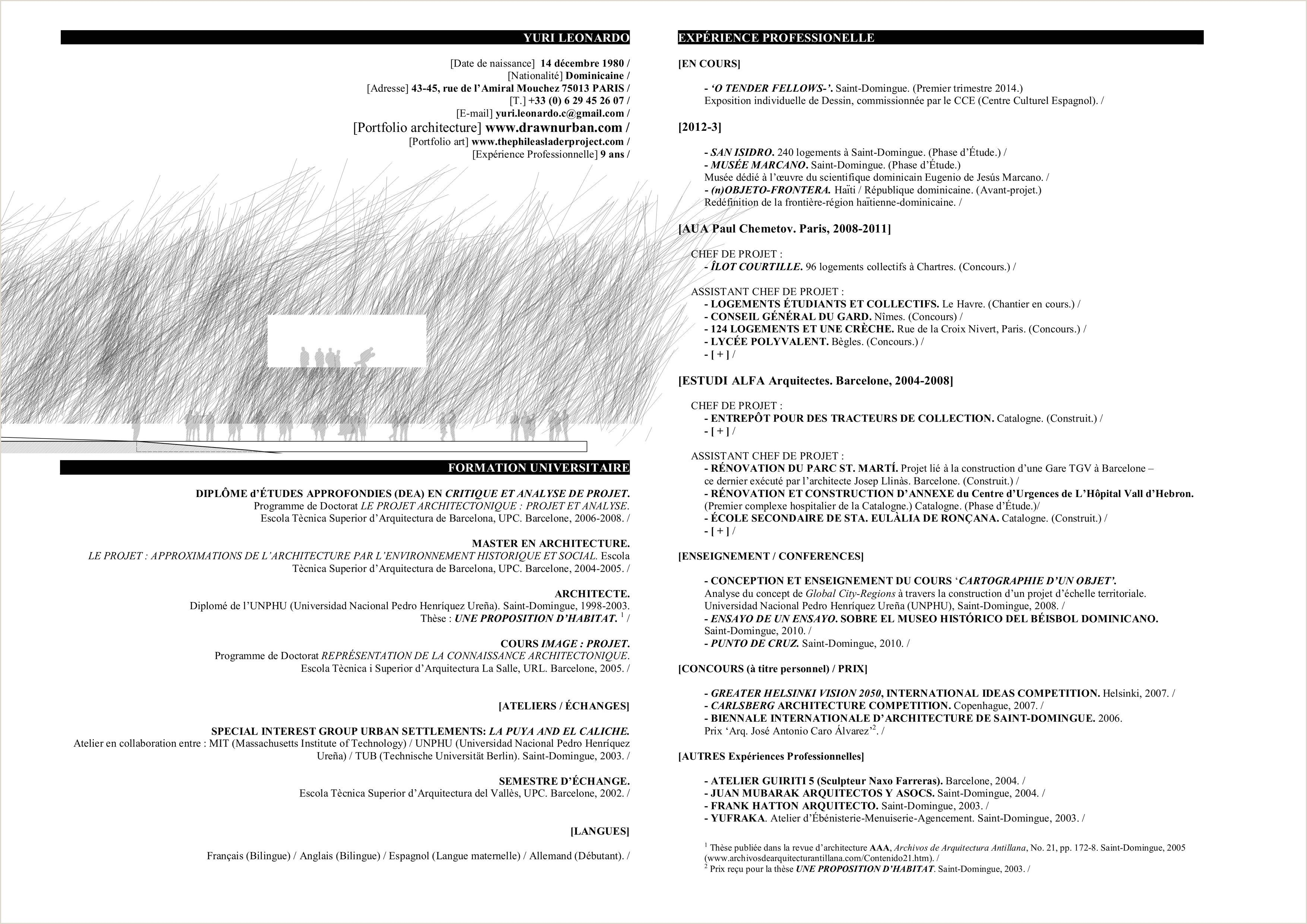 exemple de cv pdf 2014 in 2020  with images