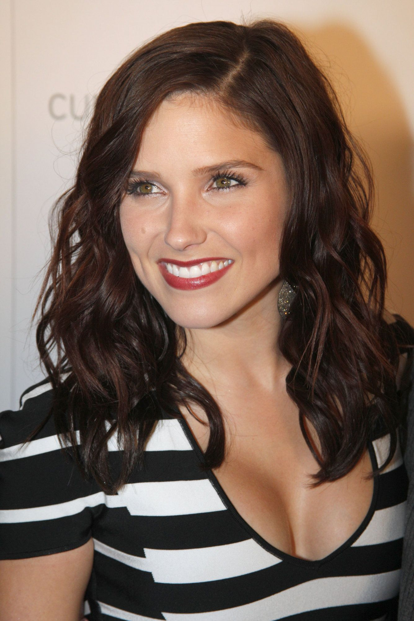 Sophia Bush's Bold Makeup Just Won The SAGAwards recommendations