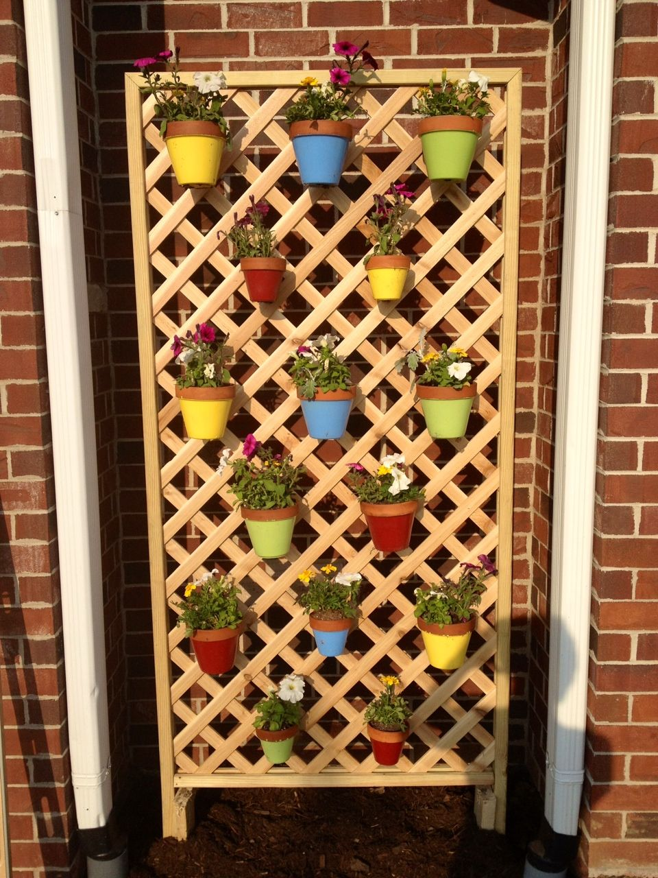Hang colorful flower pots on a trellis using hangapot the for Colorful hanging planters