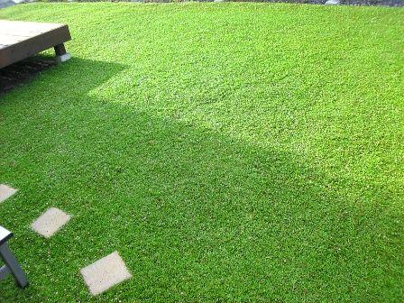 3分でわかるクラピアのメリットとデメリット 緑の温もりを感じる庭づくり 北限のクラピア 楽天ブログ クラピア ガーデンハウス 庭