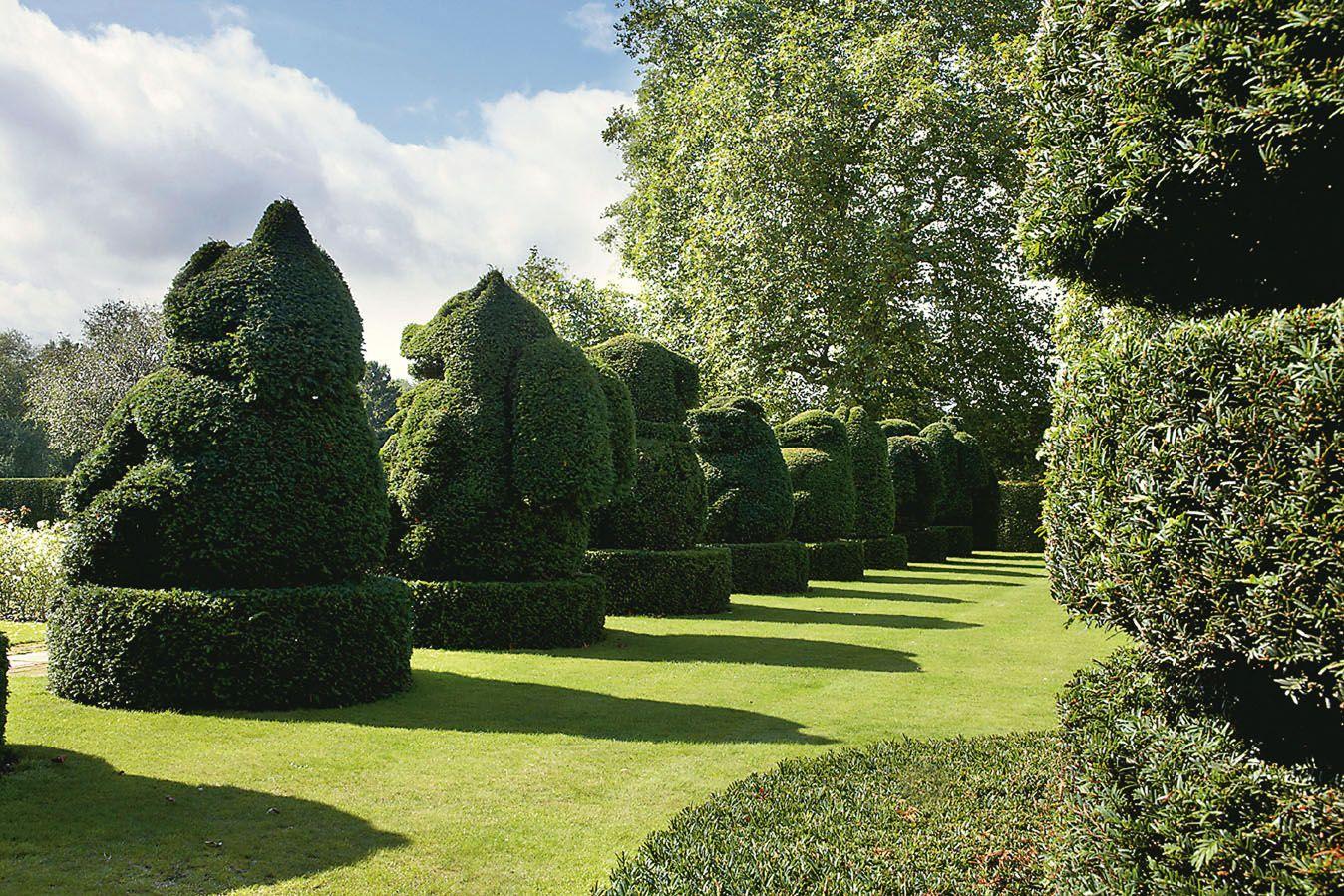 Physic garden wikipedia - Gardens
