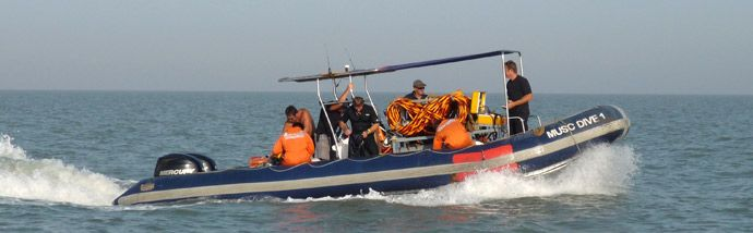 We at Mandusc offer Coast Guard training courses We offer our - anti piracy security officer sample resume